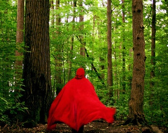 Red Riding Hood, The Wolf is Coming, 5x7 Fine Art Photograph, Grimms Fairy Tale, Photo, Print, Red Cape, Big Bad Wolf, woods, forrest