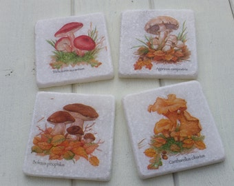 Mushrooms/Toadstools/Fungi Marble Stone Coaster Set of 4 Tea Coffee Beer Coasters