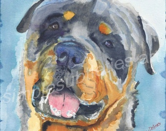 """Rottweiler male- watercolor 8""""x8"""" print by Stacey DeGrace"""