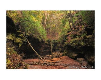"Fine Art Color Landscape Photography of Turkey Run State Park in Indiana - ""Autumn in Rocky Hollow 1"""
