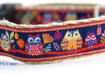 Owl Dog Collar, Colorful Dog Collar, Dog Collar, Night Owl Dog Collar, Summer Dog Collar, Dog Collar, Collar & Leash Set