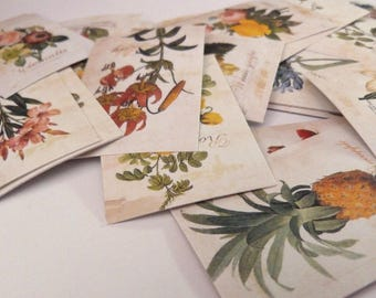 10 Assorted FLOWER STICKERS from shown - Advertisement Labels - FLOWERS Label Sticker Lot