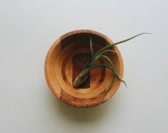 Small Decorative Wooden Bowl - Mid Century Modern Farmhouse Kitchen Decor - 2 Toned Wood Bowl