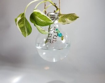 Globe light bulb plant vase
