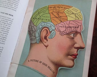 4 original overlays, not a copy -1900s color lithograph Medical MANIKIN from antique 1901 medical book - head, brain, skull, litho