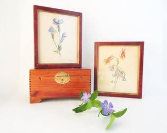 Vintage Watercolors Framed Original Botanical Paintings Artist Signed Set