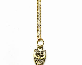 Gold plated owl charm native american necklace