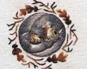 Grey Squirrels Greetings Card