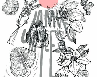 Floral and Crystal Clip Art