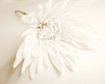 Chrysanthemum Picture, Flower Photography, Flower Photo, Fine Art Print, Floral Photography