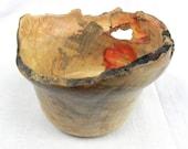 Wood bowl, Natural Edge Box Elder, 537