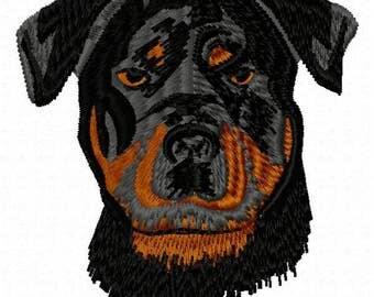 Rottweiller Dog Machine Embroidery Design - Instant Download