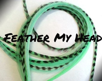 Feather Hair Extensions 9 - 12 Inches Long (23-30cm) Thin Fashion Euro - Grizzly Stripe And Solid Mix - 10 Pc Mint Green