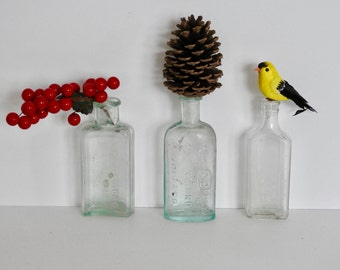Antique Glass Medicine Bottles- Whittemore, Lyric, and Ayling Bros