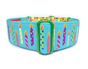 Birthday Puppy Dog Collar - Birthday Candles and Party Confetti Harlequin Martingale Collar or Buckle Dog Collar, Dog Birthday