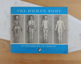 Vintage Puffin Picture Book 102, The Human Body, Cybril Bibby and Ian T Morrison, 1955