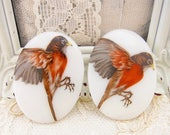 Vintage Robin Bird Cameos Glass Cabochons 40x30mm Oval West German - 2