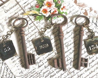 One old rusty key with number badge