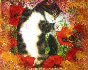 Array collage 20 X 20 cm the kitten and the poppies.