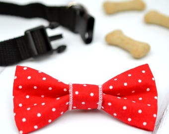 Red polka dot pet bow tie - dog bow tie - cat bow tie - dog bowtie - cat bowtie - pet accessory - gift for dog - bow for pet - dog bowties