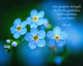 Rumi Quote, Inspirational Poetry, Greeting Card, Blue Forget-me-not, Flower Photo, Valentine's Day, Heart, Healing Art, Nature Photography