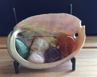 Healing Stone Starter Set with Shell and Stand, Smal Healing Stones, Healing Crystal,Chakra Stone