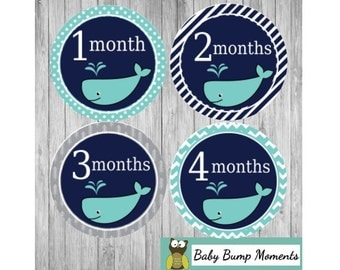 1st Baby Stickers, Newborn Monthly Stickers, Baby Age Stickers, Months 1-12 Months with Whale