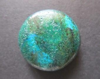 Round button Jasper forest 35x10mm