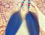 Blue Macaw Feather Earrings / Turquoise and Coral /long feather earrings