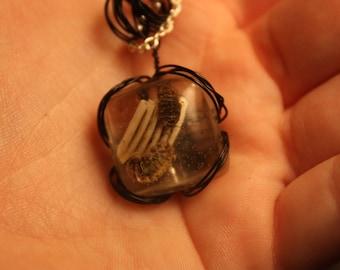 Bug/Teeth Necklace.