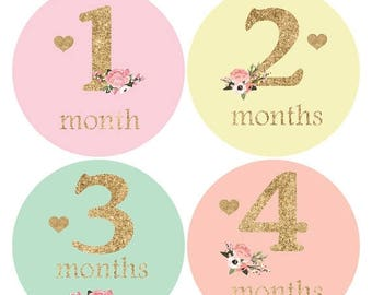 Baby girl monthly sticker, Floral Baby sticker, Glitter Baby Month Sticker, Baby Shower Gift, Milestone Stickers, Heart Stickers,growth A137