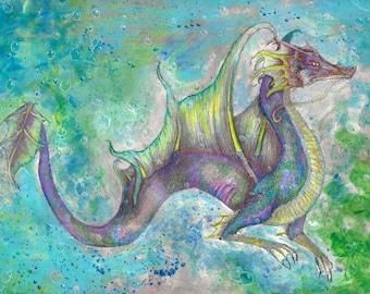 Nautilus Photo Print