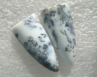 Dendritic Agate earring cabs