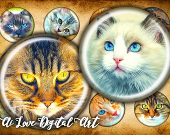 Digital collage sheet, Cat face, instant download, bottlecap images 1.5 inch, circle 1 inch (25mm) digital download cabochon, jewelry making