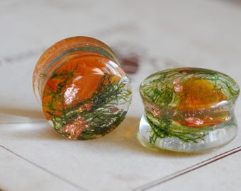 Baltic Amber Plugs, Green Moss Ear Gauges, Raw Stone Plugs, Nature Resin Gauges, Terrarium Ear Plugs, Girly Plugs, Clear Tunnels Ear Weights