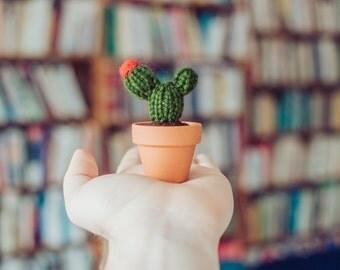 """3.25"""" Flowering Knitted Cactus - Mini Cactus, Knit Cactus, Crochet Cactus, Amigurumi, cactus toy, plush cactus, stuffed cactus, cactus art"""
