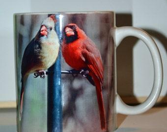 Cardinals and Baltimore Orioles Mug