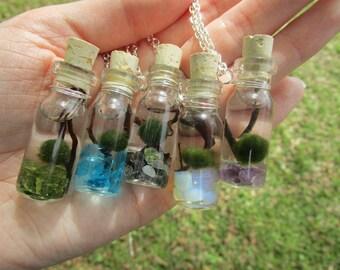Marimo Moss Ball Necklace // Terrarium Necklace // Plant Necklace