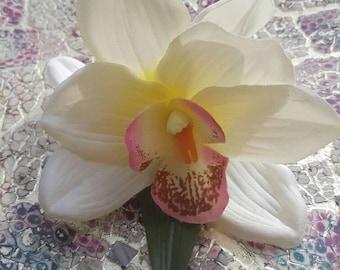 Double Cybidium Orchid Clip- Cream