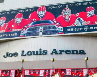 Detroit Red Wings Joe Louis Arena Postcard