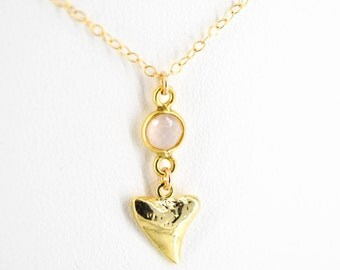 Dainty Shark Tooth Necklace
