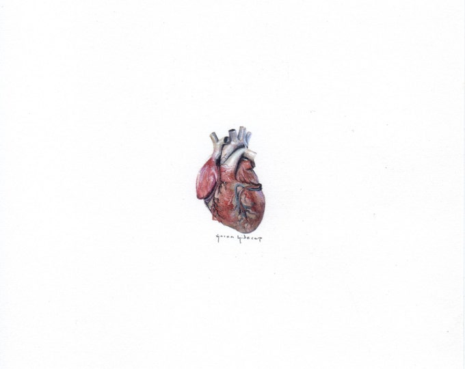 Print of Miniature painting of Human Heart tiny painting Human Heart art 5 x 5