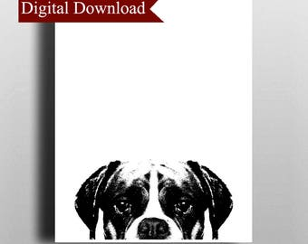 Boxer DIGITAL Print Download