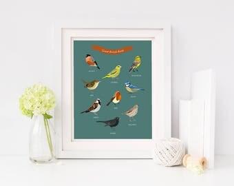 British Birds Poster - Birds of Britain - Birds Illustration - Types of Birds British Wildlife - Birds Illustrated Print - Wall Art print