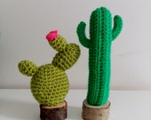 crochet cacti in wooden pot - set of 2 - cactus home decor