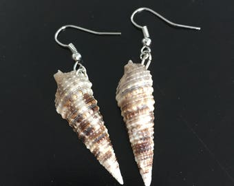 Shell Earrings - Dark Cerith