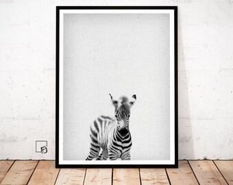 Zebra Print, Zebra Portrait, Zebra Baby decor, Zebra Wall Art, Zebra Poster, Zebra nursery Art, Zebra printable, Zebra scandinavian art