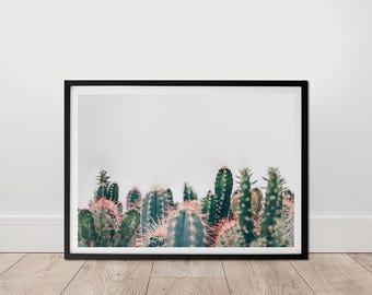 Livingroom Decor - Succulent Print, Digital Download, Cactus Wall Art, Botanical Print, Greenery Photo, Cactus Garden Wall Art, Modern Photo