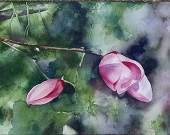 Budding Magnolia ~ original watercolor painting