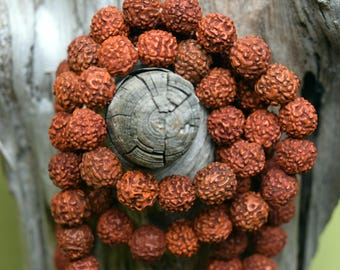 Rudraksha Beads, 11mm, 108 Set.  DIY Mala, Prayer Beads.  From India